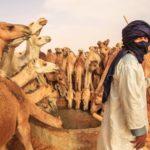 Мавритания. Безумное путешествие